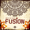 Various Artists - Best of 2012 - Fusion artwork