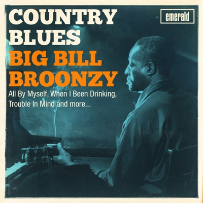 Country Blues - Big Bill Broonzy
