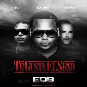 Te Gusta El Sexo (feat. Fuego & Juan Magan) - Single Mp3 Download
