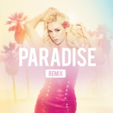 Paradise (Remixes) [feat. Akon] - EP