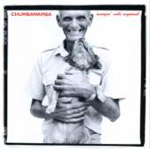 Chumbawamba - This Girl