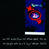 The Best Mixes from the Album - Debut for All the People Who Don't Buy White-Labels