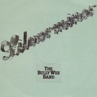 Silvermines by The Bully Wee Band on Apple Music