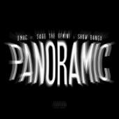 Panoramic (feat. Sage the Gemini & Show Banga) - Single
