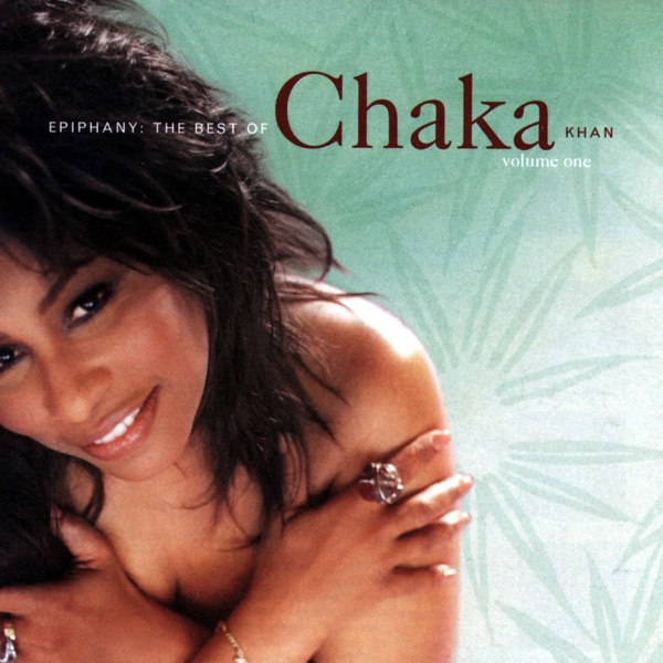 Chaka Khan mit I Feel for You