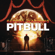 Pitbull - Echa Pa'lla (Manos Pa'rriba) [feat. Papayo]