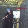 Steve Lieberman the Gangsta Rabbi - What Is Life(george Harrison)