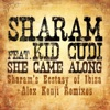 She Came Along feat Kid Cudi Remixes