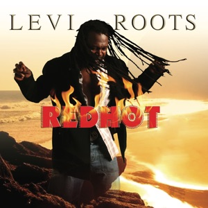 Levi Roots - US Africa