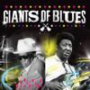 Giants of Blues - Muddy Waters & John Lee Hooker