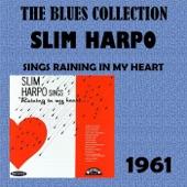 Slim Harpo - I Got Love If You Want It