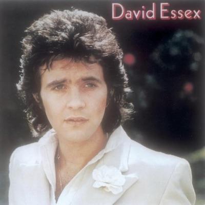 David Essex