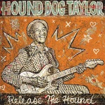 Hound Dog Taylor - It Hurts Me Too