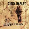 Beach In Hawaii - Ziggy Marley
