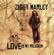 Beach In Hawaii - Ziggy Marley - Ziggy Marley