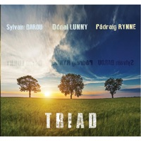 Triad by Pádraig Rynne, Donal Lunny & Sylvain Barou on Apple Music