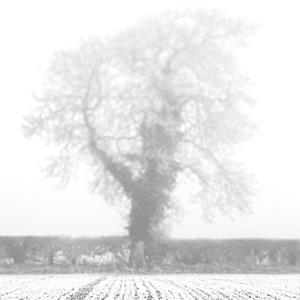 Passive Tense - The poetry, philosophy and fiction of Luke Andreski