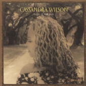 Cassandra Wilson - Shelter from the Storm