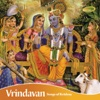 Vrindavan Songs of Krishna