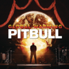 Feel This Moment feat Christina Aguilera - Pitbull mp3