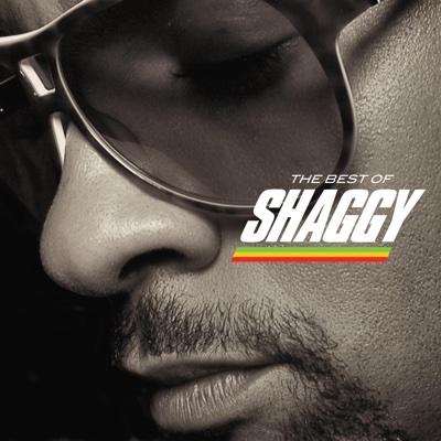 Boombastic - Shaggy song