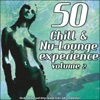50 Chill & Nu-Lounge Experience, Vol. 2 (Great Chillout and Deep Lounge Tunes Hits Compilation), Various Artists