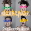 Donkeyboy - Crazy Something Normal artwork