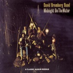 David Bromberg Band - Don't Put That Thing On Me
