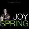 Joy Spring (LP Version)  - Larry Coryell