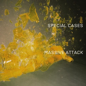 Special Cases - Single