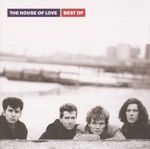 The House of Love - Destroy The Heart