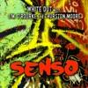 Senso, White Out, Jim O'Rourke & Thurston Moore