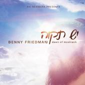 Download Yesh TikvahofBenny Friedman
