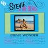 Stevie at the Beach ジャケット写真