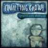 Somewhere Under Wonderland, Counting Crows