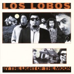 Los Lobos - One Time One Night
