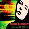 Água de Beber (45 Original Tracks Digitally Remastered) ジャケット写真