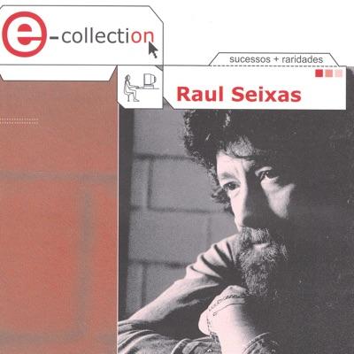 E- Collection: Raul Seixas - Raul Seixas