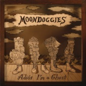 The Moondoggies - Midnight Owl