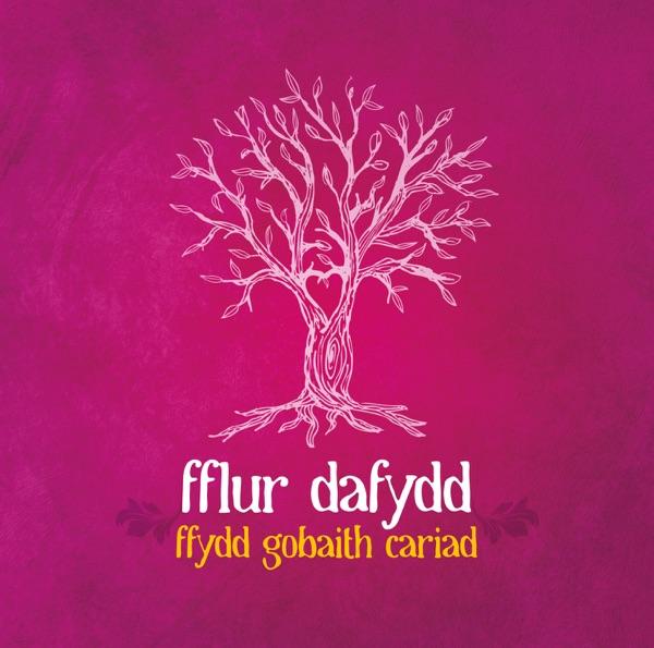 Cover art for Ffydd, Gobaith Cariad
