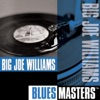 Nobody Knows You When You're Down And Out - Big Joe Williams