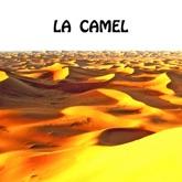 La Camel