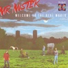 Mr Mister - Welcome To The Real World