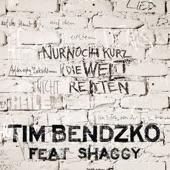 Nur noch kurz die Welt retten (Echo Remix) [feat. Shaggy] - Single