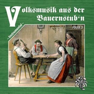Volksmusik aus der Bauernstub'n, Folge 3 – Various Artists