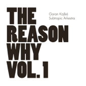 The Reason Why Vol. 1