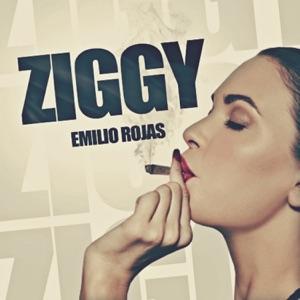 Ziggy (Radio Edit) - Single Mp3 Download