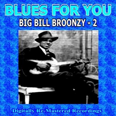 Blues For You - Big Bill Broonzy - 2 - Big Bill Broonzy