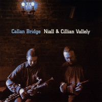 Callan Bridge by Niall & Cillian Vallely on Apple Music
