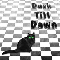 Dusk Till Dawn by Nightwatch & Moondance on Apple Music